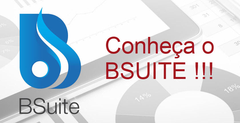 BSUITE LOGO AND THE PHRASE MEET BSUITE